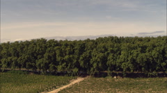 Tree Lined Canal Du Midi Stock Footage