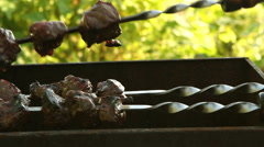 The meat on the skewers. Stock Footage