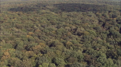 Low Flight Over Woods South Of Demigny Stock Footage