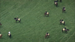 Horse Action On Newmarket Gallops Stock Footage