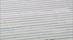 Oyster Beds In Donegal Bay Stock Footage