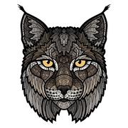 Wildcat lynx mascot isolated head - stock illustration
