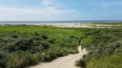 Path leading to green dunes and beach Stock Footage