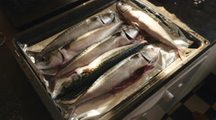 Marinating mackerels Stock Footage