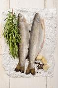 Trout on aluminum foil with rosemary Stock Photos