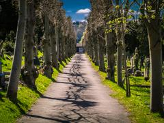Walkway in a cemetery - stock photo