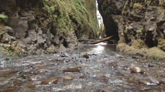 Lower Oneonta Gorge Stock Footage