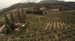 Orchard Aerial: Pull Back Flyover of Tractor Working Over Fruit Orchard Stock Footage