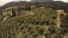Orchard Aerial: Tractor Spraying Fruit Trees/Pears/Organic Farming Stock Footage