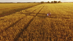 Young man playing pandora in wheat field at sunset. Slow motion. Aerial view Stock Footage
