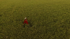 Young beautiful girl with foxy hair in red dress and hat walking in field. Slow Stock Footage