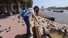 Thai chinese adult beautiful girl Travel bangkok philanthropy give food bird Stock Footage
