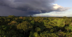 Aerial View Of Lodge, Rain Forest In Peru, South America Stock Footage