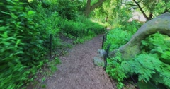 Walking on a Path in Central Park in Manhattan   Stock Footage