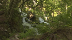 Mountain whitewater river flowing through the lush green forest in spring Stock Footage