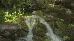 CLOSE UP: Mountain river rapids flowing over mossy rocks in sunny forest Stock Footage