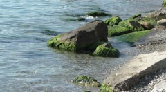 Calm Waves on Sea Coast Bathing Big Stones in Sunlight Stock Footage