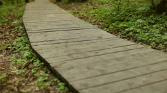Girl Runs Along a Wooden Walkway in the Forest Stock Footage