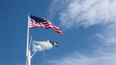American flags waving in the wind Stock Footage