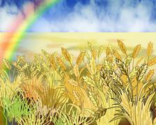 Rainbow Over Wheat Field in Summer Day Stock Illustration