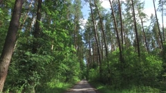 Travel by bicycle among the trees growing in wild on sandy dirt road Stock Footage