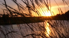 Sunset Over River - Beautiful Nature in Russia Stock Footage