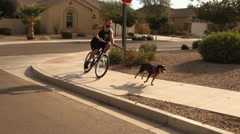Bicycle Rider is Pulled by Dog on Typical Arizona Neighborhood Sidewalk Stock Footage