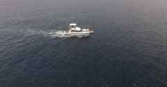 Boat Cruising in Open Water with Pod of Dolphins Aerial Stock Footage