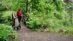 A hiker crossing a wooden bridge. Stock Footage