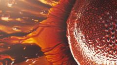 Ferrofluid Macro 1 Stock Footage