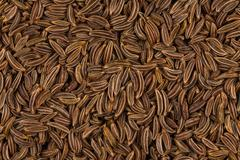 Close up caraway seeds Stock Photos