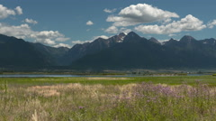 Mission Valley, Montana, Field and Mountains Stock Footage