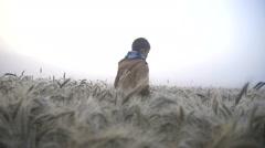 Boy walks on a field at dawn, dew, slow motion Stock Footage