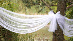 Wedding decorations on the trees - stock footage