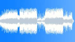 Commercial Acoustic Stock Music