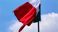 Mexican Flag Stock Footage
