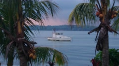 Lone Boat and Coconut Trees Stock Footage
