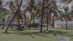 Lummus Park Miami Beach D-log footage Stock Footage