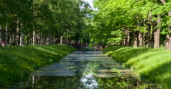 Body of Water in the Old Park 4K - stock footage
