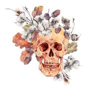 Skull and twigs, cotton flower, yellow oak leaves Stock Illustration