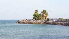 Turtle's Pier in Diano Marina Ligury Italy Stock Footage