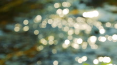 Sun reflection on a water surface Stock Footage