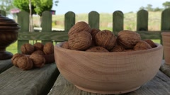 Fresh shelled walnut in nature Stock Footage