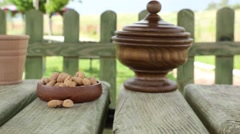 Fresh shelled almonds in nature - stock footage