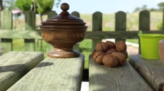 Fresh organic walnut in nature Stock Footage