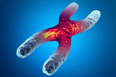 X chromosome, red in the center, the concept of infection, mutation of the Stock Illustration