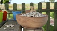 Dry bean on tree table Stock Footage