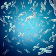 X-chromosomes as a concept for  human biology   medical symbol  gene therapy or Stock Illustration