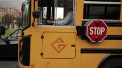 School route boys Stock Footage