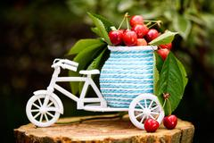 Photo of a white bicycle with cherries and leaves on baggage on a tree stump. Stock Photos
